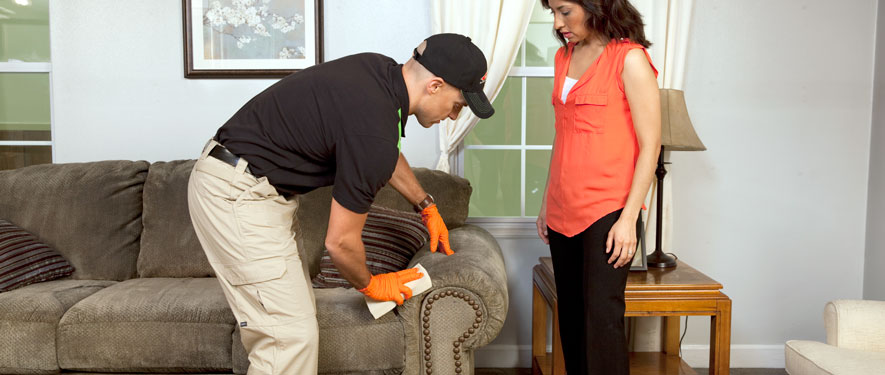 Lexington Park, MD carpet upholstery cleaning
